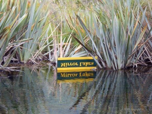 Milford Sound: Breathtaking!