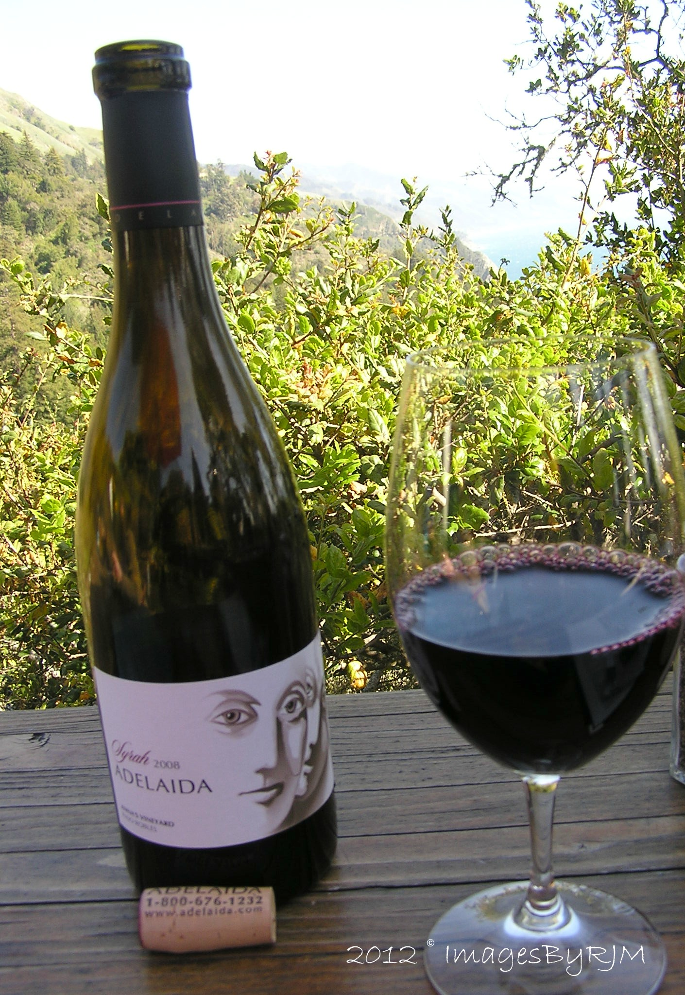 Bottle and glass of red wine, with foliage and ocean in background.