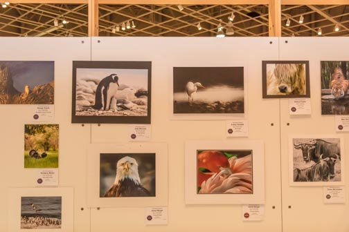 California State Fair | Don't Miss A Moment | Fine Arts | Photography | Sacramento | Images By RJM