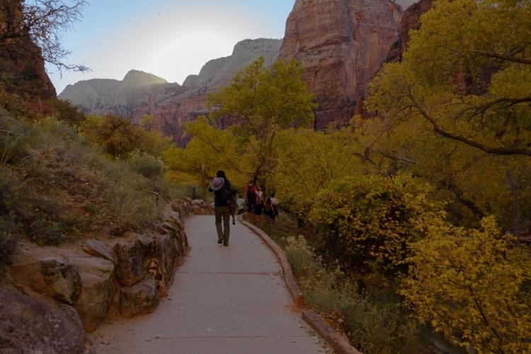 Zion National Park | Utah | Weeping Rock | Nature | Landscape | Canyon | October 2017 | Images by RJM