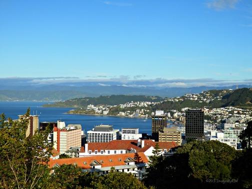 View of Wellington, New Zealand, from Wellington Botanical Garden (North Island) (Feb. 2013)