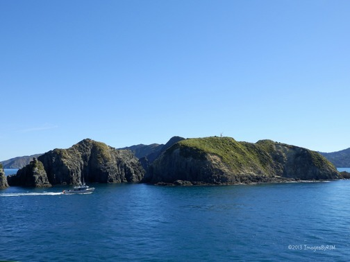 Hello, South Island