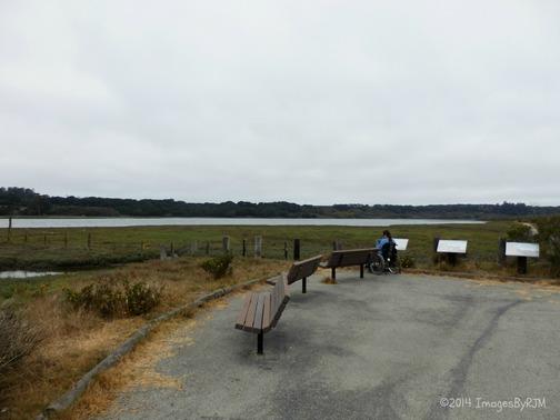 Kirby Park at Elkhorn Slough Preserve