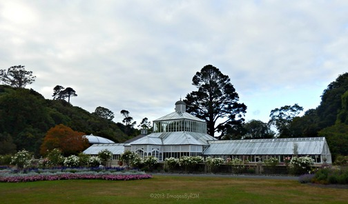 Sunday morning at Dunedin Botanic Garden, New Zealand