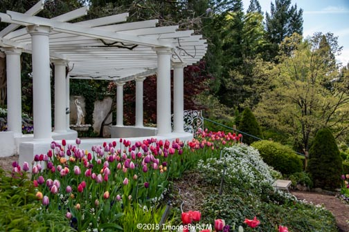 Crystal Hermitage | Ananda Village | Nevada City | Northern California | gardens | tulips | wheelchair accessible | colonnade
