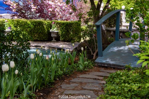Crystal Hermitage | Ananda Village | Nevada City | Northern California | gardens | tulips | foot bridge