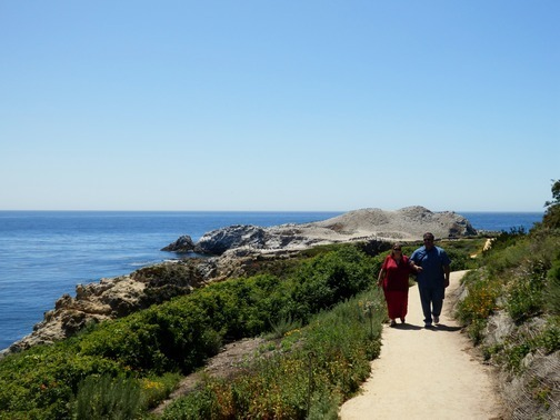 Point Lobos Docent Graduation