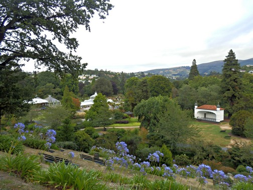 View from the upper garden
