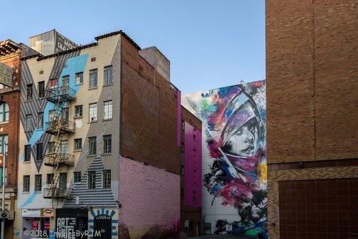 Street Art | Sacramento | Wide Open Walls | Artists | Mural Festival | Visit Sacramento | Christina Angelina