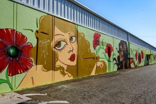 Street Art | Sacramento | Wide Open Walls | Artists | Mural Festival | Visit Sacramento | Few and Far