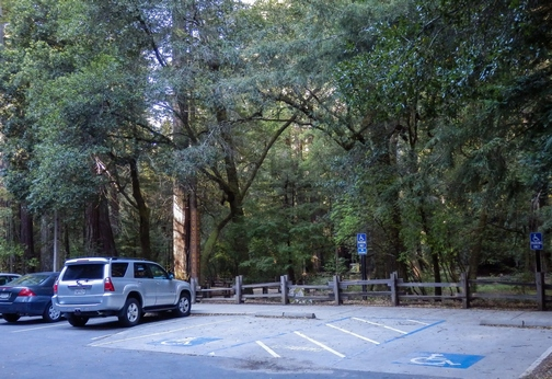 Big Basin Redwoods State Park, Santa Cruz Mountains, Redwood Loop Nature Trail, Northern California, wheelchair accessible, redwood forest, Images by RJM