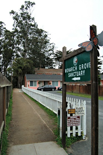 Accessible entrance to Monarch Butterfly Sanctuary, Pacific Grove