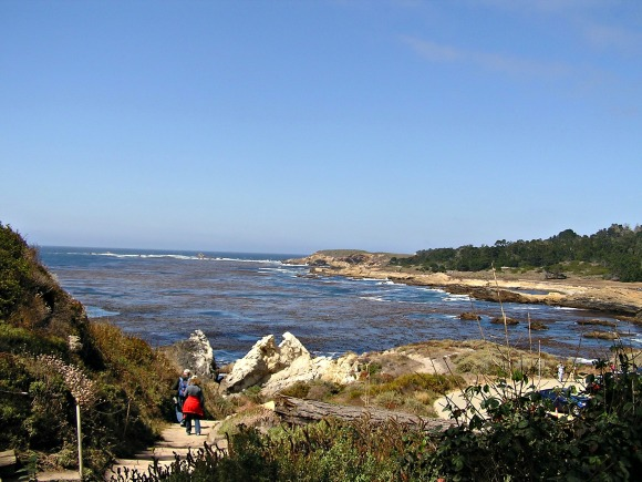 Point Lobos State Reserve, Bird Island Trail