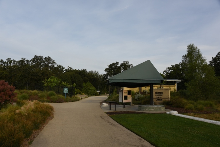 Bridge | Sundial Bridge | Santiago Calatrava | Redding, California | Northern California | Turtle Bay Exploration Park | Sacramento River | accessible | sundial | McConnell Arboretum | botanical garden