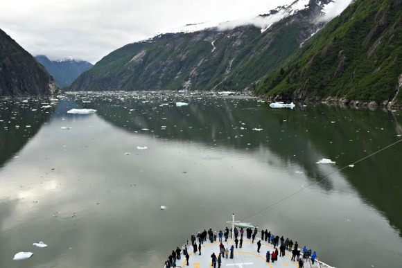 Tracy Arm Fjord, Alaska, Alaskan Cruise, Celebrity Solstice, MS Foundation, wheelchair accessible, excursions, nature, adventure, education, wildlife, culture, highlights, Anything Is Possible Travel, Images by RJM